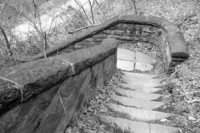 2013-04-16-schenley-park-02-bw