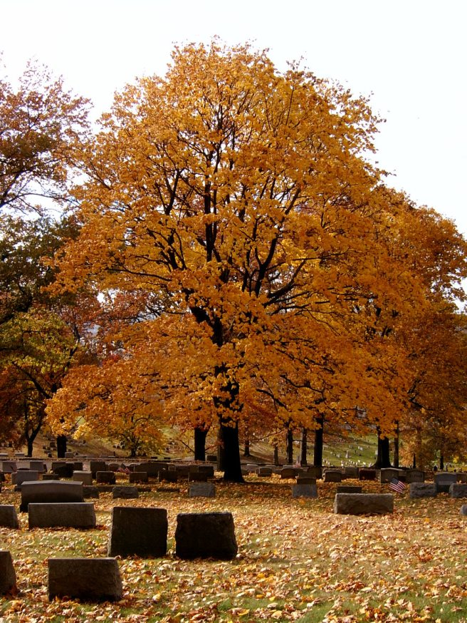 2013-11-09-Union-Dale-Cemetery-04