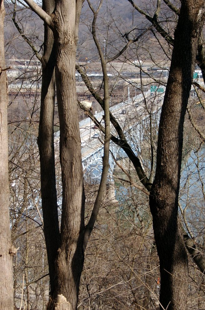2014-03-07-Highland-Park-Bridge-01