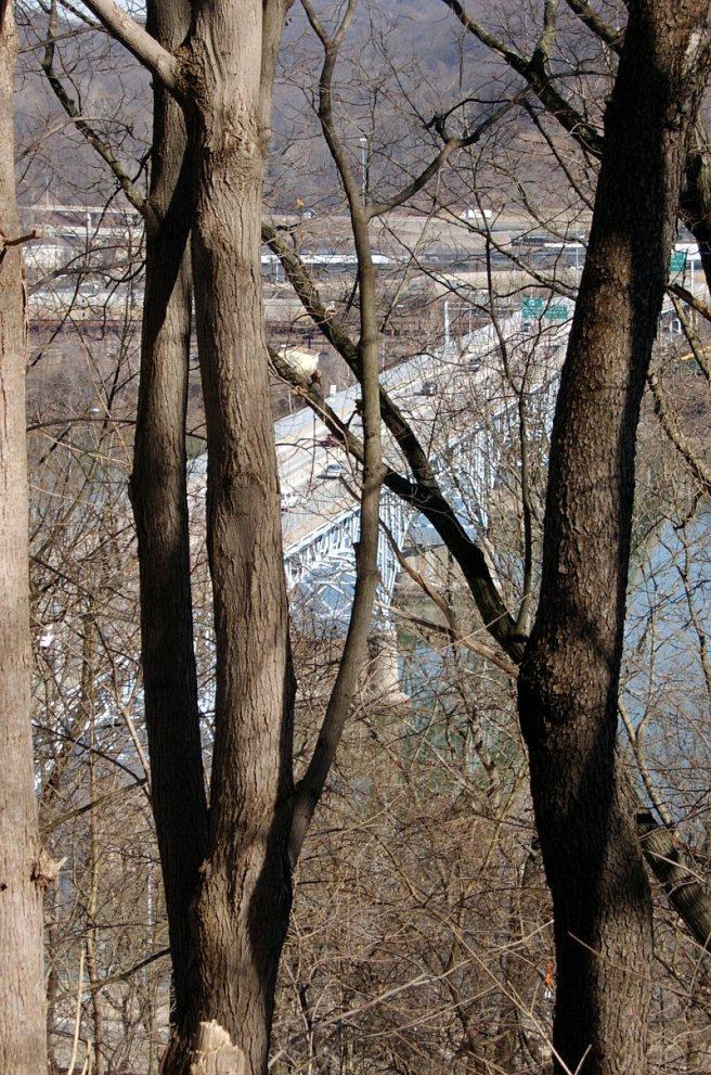 2014-03-07-Highland-Park-Bridge-01