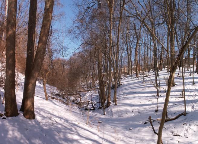 Snow Panorama 2015-02-20, 03