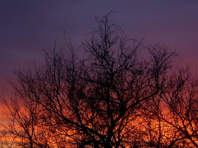 Sunset, 2014-02-07, 01