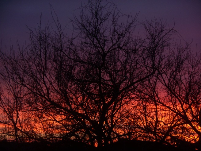 Sunset, 2014-02-07, 02r