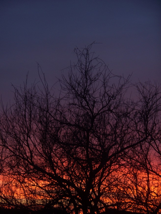 Sunset, 2014-02-07, 03r